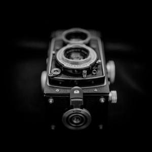 Rolleiflex T, Ilford Delta 400, XTOL 1+1