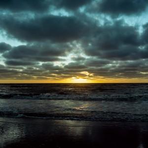 2014-02-09-Rolleiflex-T-Film-11-116